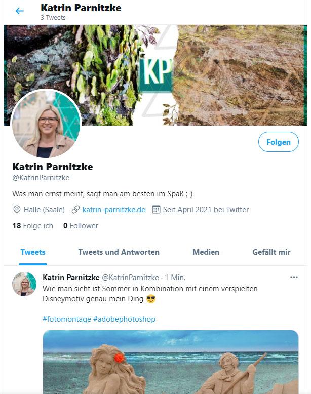 Social Media Kanal: das Twitter-Profil von Katrin Parnitzke